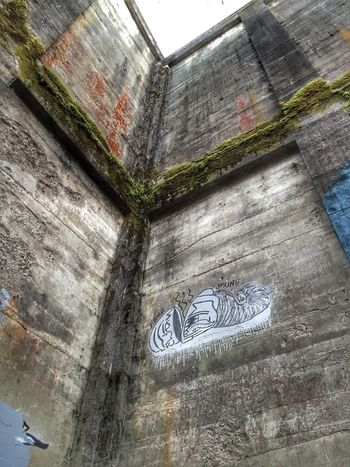 Rustic Abandoned Places Perspective Graffiti Art Textures And Surfaces Scenic View Abandoned Neat Places Old Abandoned Mill Views Abandoned Buildings Mural Art