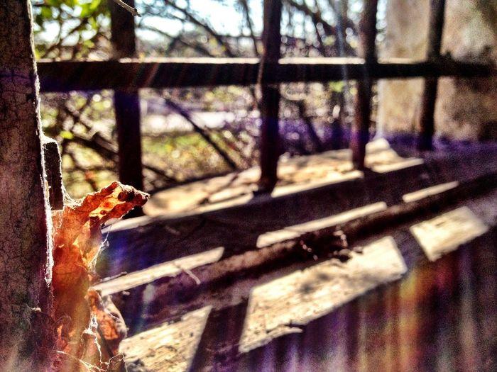 Window Winter Abandoned