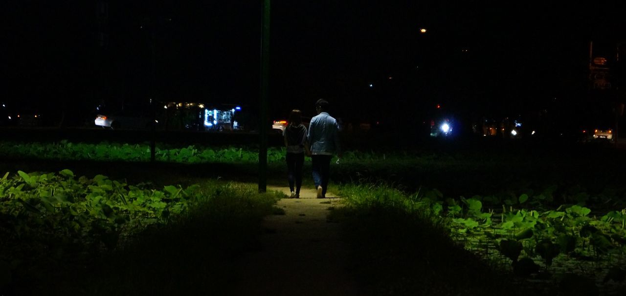 night, real people, one person, illuminated, men, rear view, walking, full length, field, standing, lifestyles, growth, outdoors, agriculture, women, nature, adult, people