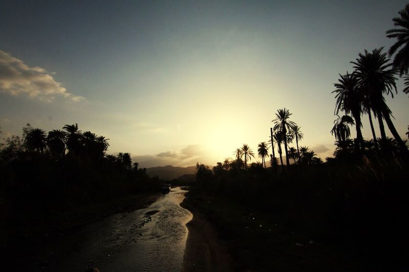 وادي قنونا