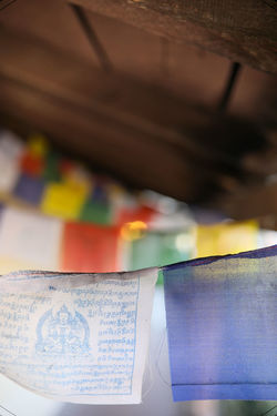 Buddah Celebration Lights Yoga Festive Flag Multi Colored Yogi Zen