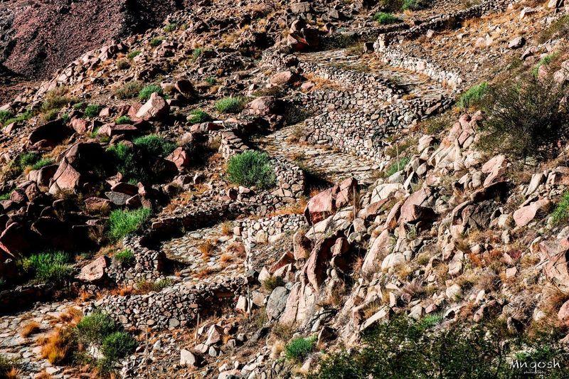 مسار المشاة من الطائف إلى مكة Full Frame Backgrounds No People Nature Day Pattern Land