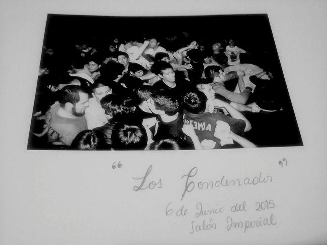Blackandwhite Concert Photography Pogo