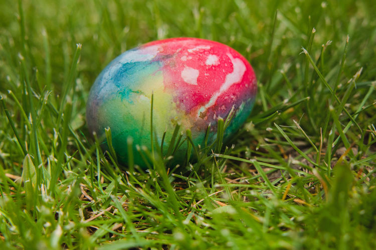 Close-up of colorful easter eggs in field