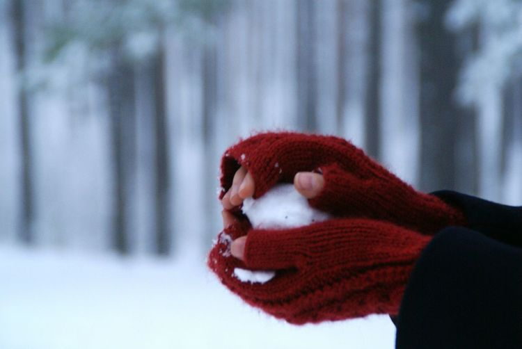Close-up of person hand in snow