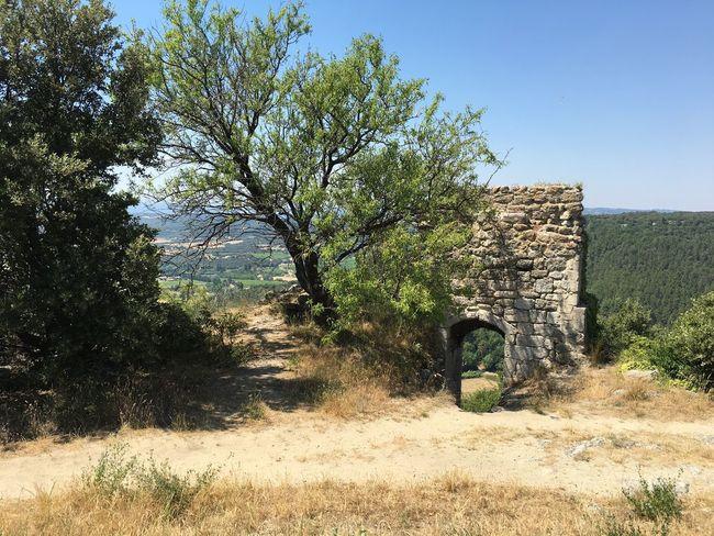 Provence Drôme