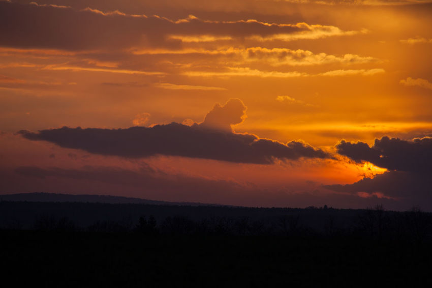 Beauty In Nature Cloud - Sky Day Idyllic Landscape Nature No People Orange Color Outdoors Scenics Silhouette Sky Sunset Tranquil Scene Tranquility Tree