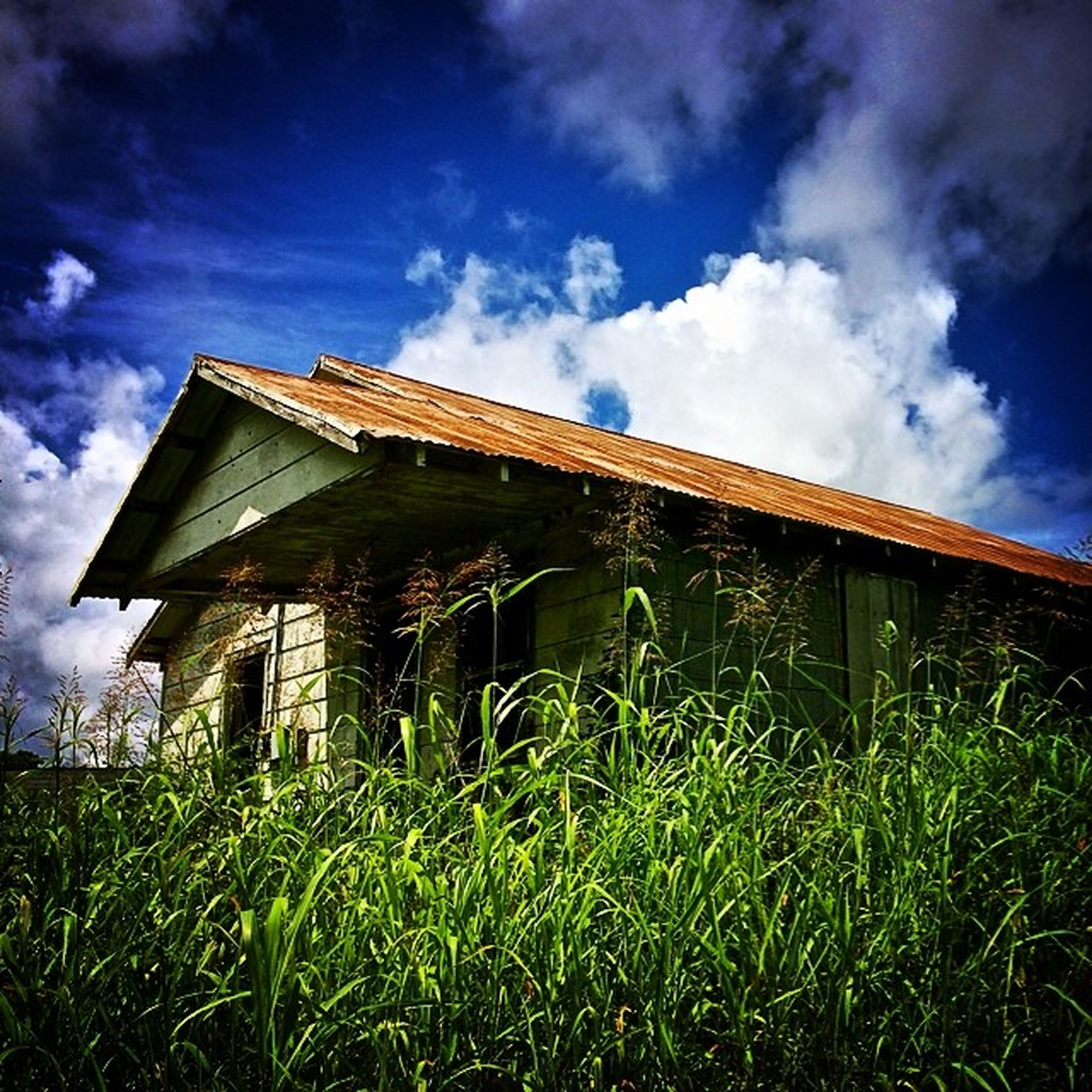 grass, architecture, building exterior, built structure, sky, cloud - sky, field, grassy, house, cloud, plant, growth, green color, cloudy, nature, day, low angle view, outdoors, residential structure, blue