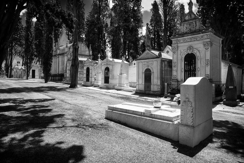 ✨Hallelujah✨Leonard Cohen Architecture Photography Bnw_friday_eyeemchallenge Bnw_shadows Black And White Collection  Black And White From My Point Of View Walking Around Taking Pictures Black And White Photography Eyeem Market EyeEmNewHere Black&white Building Exterior Architecture No People Mausoleum Mausoleum Series Gravestones Graveyard Graveyard Beauty Prazeres Cemitério Dos Prazeres Lisbon Lisboa, Portugal Lisboalovers Second Acts Perspectives On Nature Rethink Things Postcode Postcards Be. Ready. Black And White Friday Step It Up One Step Forward EyeEm Ready   AI Now An Eye For Travel The Graphic City Colour Your Horizn Modern Workplace Culture Stories From The City Go Higher This Is Aging This Is Family Visual Creativity Summer Exploratorium Adventures In The City Focus On The Story #FREIHEITBERLIN The Architect - 2018 EyeEm Awards The Traveler - 2018 EyeEm Awards