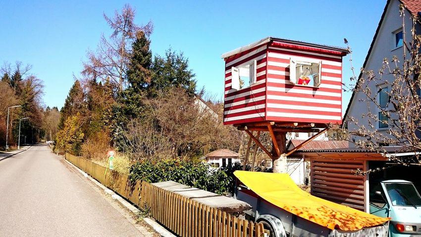Tree House Goforawalk Open Edit Enjoying The Sun Garden Discover Your City EyeEmBestPics Road Living Bold