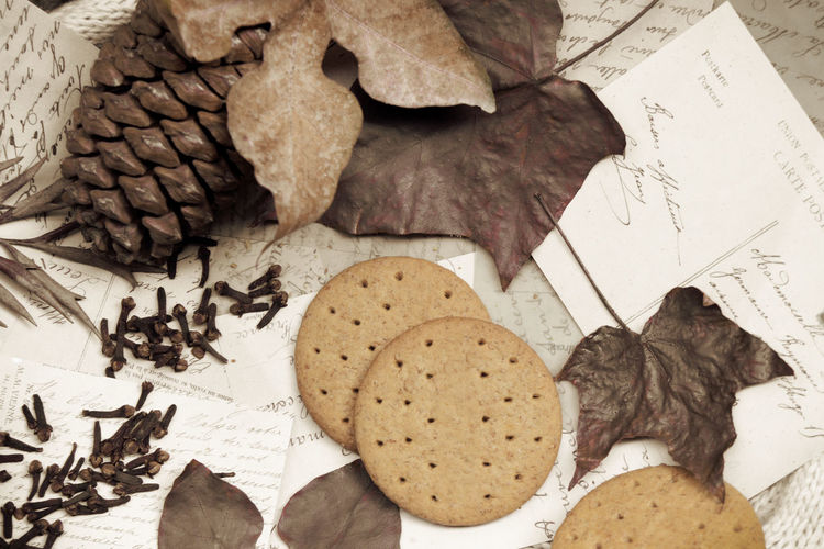 High angle view of dry leaves on paper