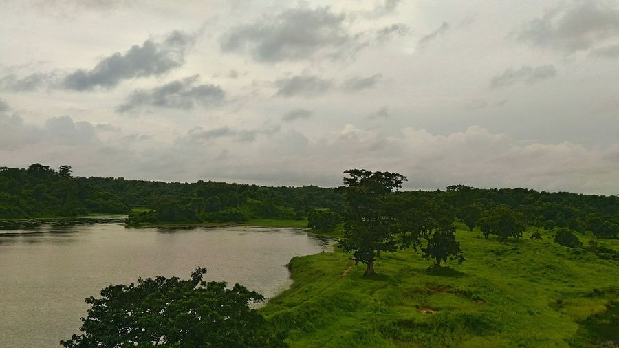 Tree Nature Landscape Outdoors Forest Water Lake Cloud - Sky Day Sky Vacations Beauty In Nature Grass Freshness Tripura Northeastindia Northeast India Monsoon Trishna Wildlife Sanctuary Bison Reservation