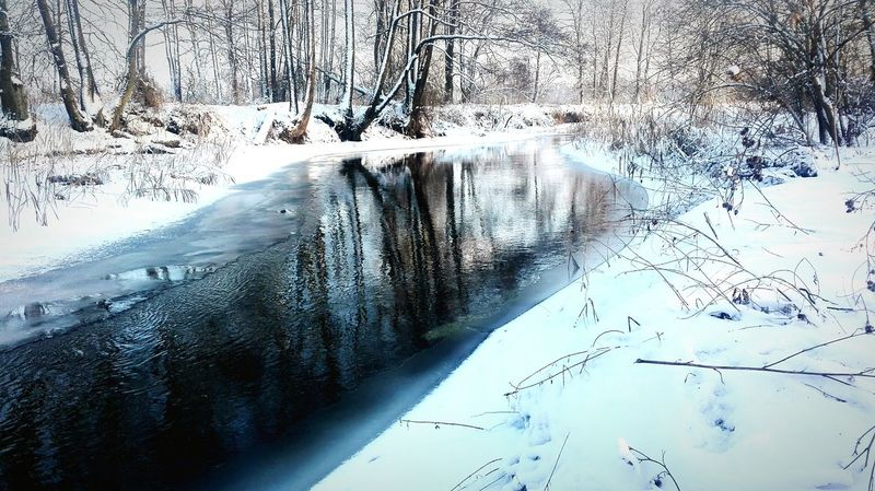 River Poland Winter Snow ❄ Snowing Water Tree January 2017 Cold Winter ❄⛄ - 10 Degree