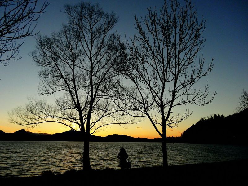 Travelling Lake View Germany My Travel Trees Light And Shadow Dark Evening