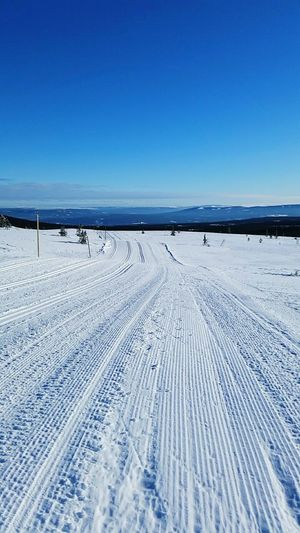 What a day! Crosscountry2015 Crosscountry Skiing Lovely Day Metime Luckyme Norwegian Winter