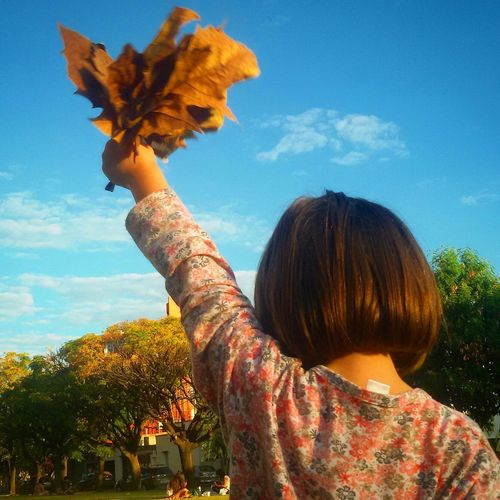 Rear view of girl holding dry leaves against sky
