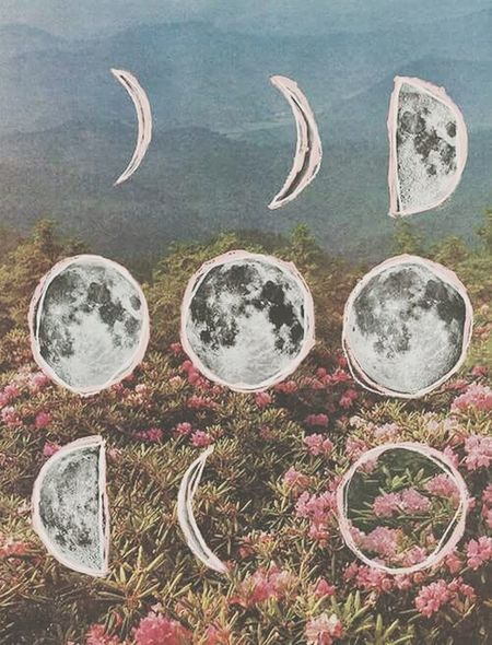 Moon Roses Hello World ✌ Dre▲m Fases
