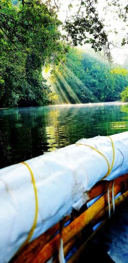 sunlight rays .... capture at the right moment Sunlight Sunlight Through Trees Sunlight On Water Sunlight And Reflection Heaven On Earth HEAVENONEARTH EyeEmNewHere Water No People Day Lake Outdoors Nature Close-up