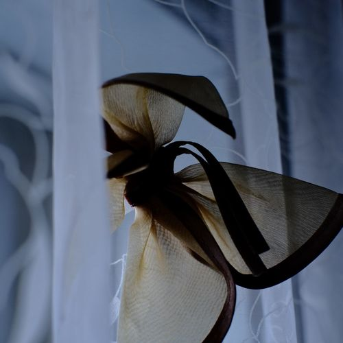 Close-up of textile hanging by window