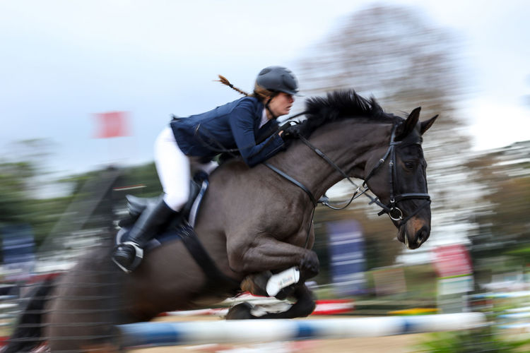 Horse jumping Competition Horse Horse Jumping Horse Photography  Horse Riding Horsephotography Horseriding Horses Jumping Motion Motion Blur Motion Capture Motion Photography Motionphotography Outdoors Riding South Africa Sport Sports Photography capturing motion