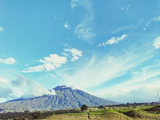 KerinciMountain Kerinci Indonesia Adventure Beauty In Nature Blue Cloud - Sky Sky No People Day Outdoors Nature Tea Crop