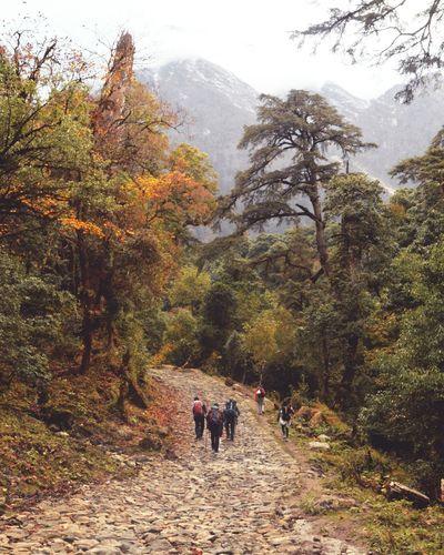Trekking Mountains Nepal Travel Nepal Manang