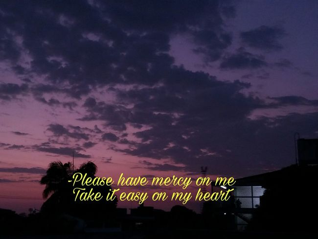 Shawn Mendes Sunset_collection