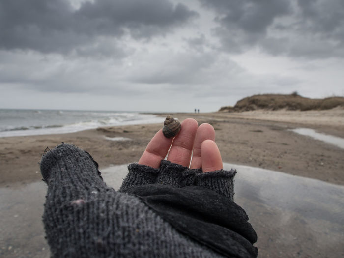 Cropped Image Of Hand Wearing Gloves Holding Snail At Beach