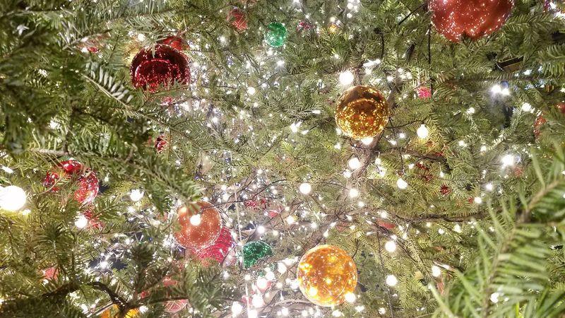 Christmas Christmas Decoration Christmas Tree Backgrounds Close-up Christmas Lights Tree No People Illuminated