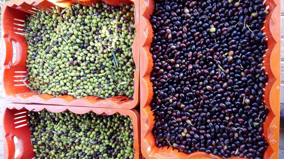 Food Food And Drink Healthy Eating For Sale Market Freshness Abundance No People Retail  Choice Directly Above Variation Day Large Group Of Objects Agriculture Outdoors Close-up Legume Family Oliven Olive Harvesting Olive Harvest Nature Freshness Fruit