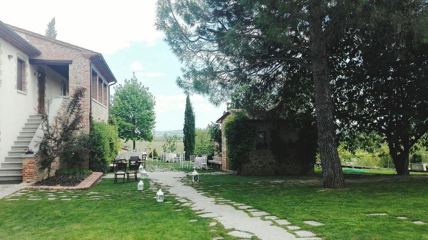 Toscana Montesansavino Podere