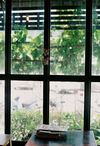 EyeEmNewHere Window Glass - Material Indoors  Window Frame Transparent No People Greenhouse Chair Thailand Manualfocus Film135 NikonFM2 Analogphotography Analogphoto Filmphotography Filmisalive Film Lifestyles Subjectlight Highlights Sunlight Abook Coffeeshop Intheroom The Secret Spaces Break The Mold BYOPaper! Live For The Story The Great Outdoors - 2017 EyeEm Awards