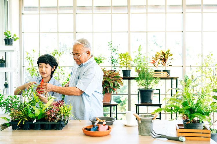 Senior man assisting grandson in greenhouse