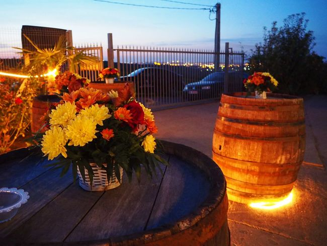 Business Finance And Industry Illuminated Night Sky Flower Arrangement Flower Bouquet  Barrels Rural Scene Lights The Week On EyeEm The Week On Eyem Summer Night Sunset Sunset Sky EyeEmNewHere Paint The Town Yellow