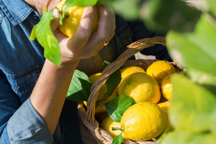 Midsection of man holding lemon outdoors