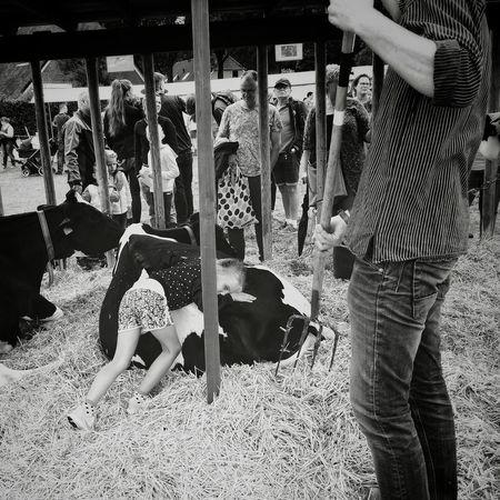 """""""Hugging a cow"""" Animal Cow Hugging Farmer Farmers Animal Love Animal Lover Blackandwhite Blackandwhite Photography Blackandwhitephotography Blackandwhitephoto LG  LGV30photography LGV30 Bonding Togetherness Friend"""