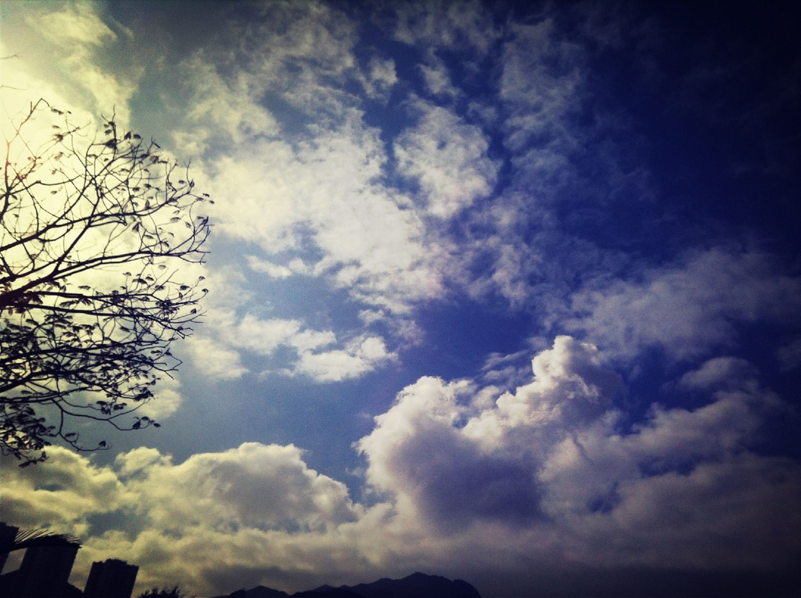 sky, low angle view, cloud - sky, cloudy, silhouette, beauty in nature, tranquility, nature, cloud, scenics, tranquil scene, tree, cloudscape, weather, outdoors, overcast, no people, day, idyllic, dusk