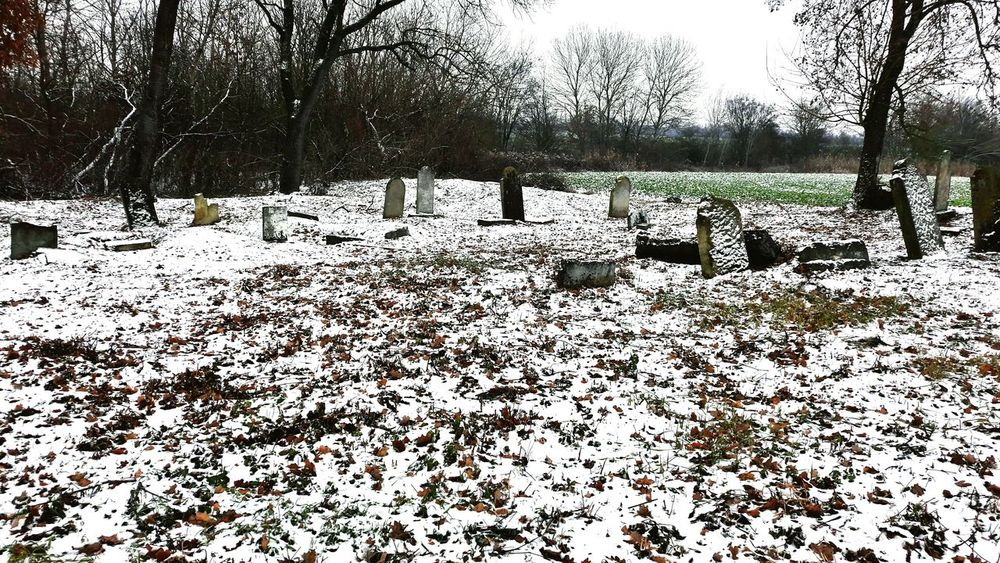 Jewish Culture Cementery Old Jewish Cemetery Jewish✡🕇☗ Winter Zidovsky Cintorin Nature Cold Temperature No People Snow Outdoors Winter