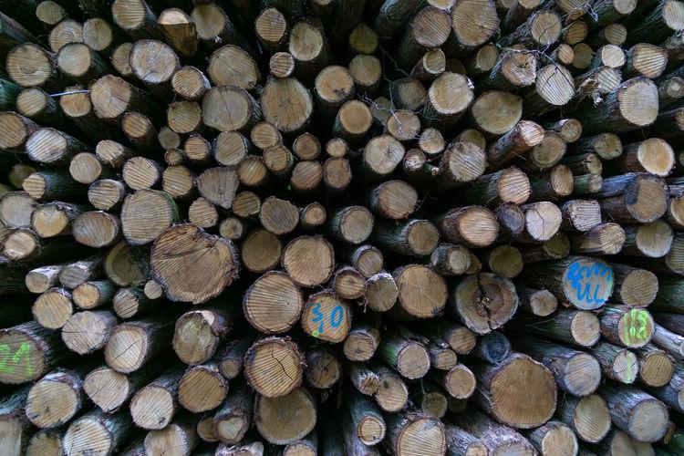Full Frame Wood