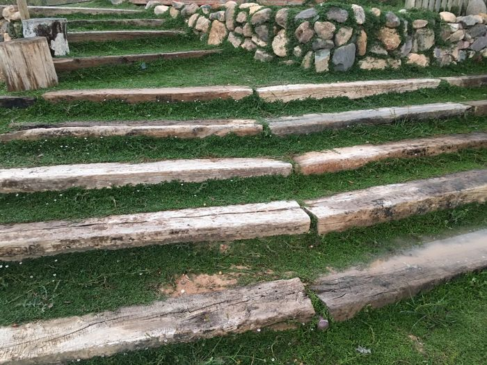 Steps Steps And Staircases Day High Angle View No People Outdoors Grass Nature