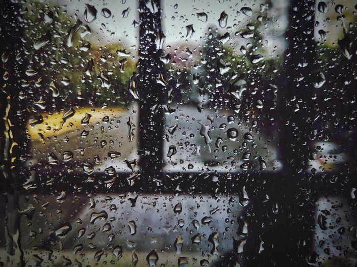 rain on the