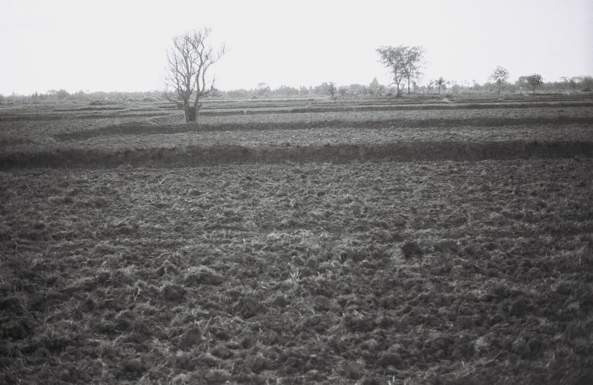 Agricultural area soil preparation Landscape Agriculture Film Film Photography Analogue Photography Black And White Ishootfilm Ilfordpan100 Olympus Om-10 Farm Monochrome