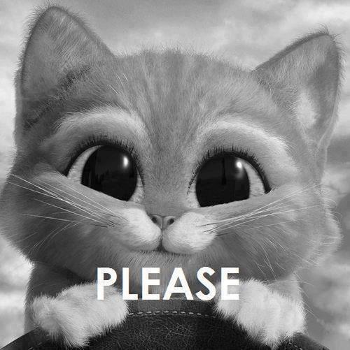 cats#please#pretty#love