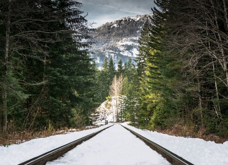 #beautifulbc #LeadingLines #supernaturalBC #traintracks Beauty In Nature Cold Temperature Day Forest Landscape Nature No People Outdoors Scenics Sky Snow Tranquil Scene Tranquility Tree Weather Winter