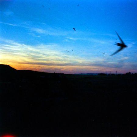 Gravinainpuglia Mytown Sunset Nofilter Analogic Photo Lasardina Love