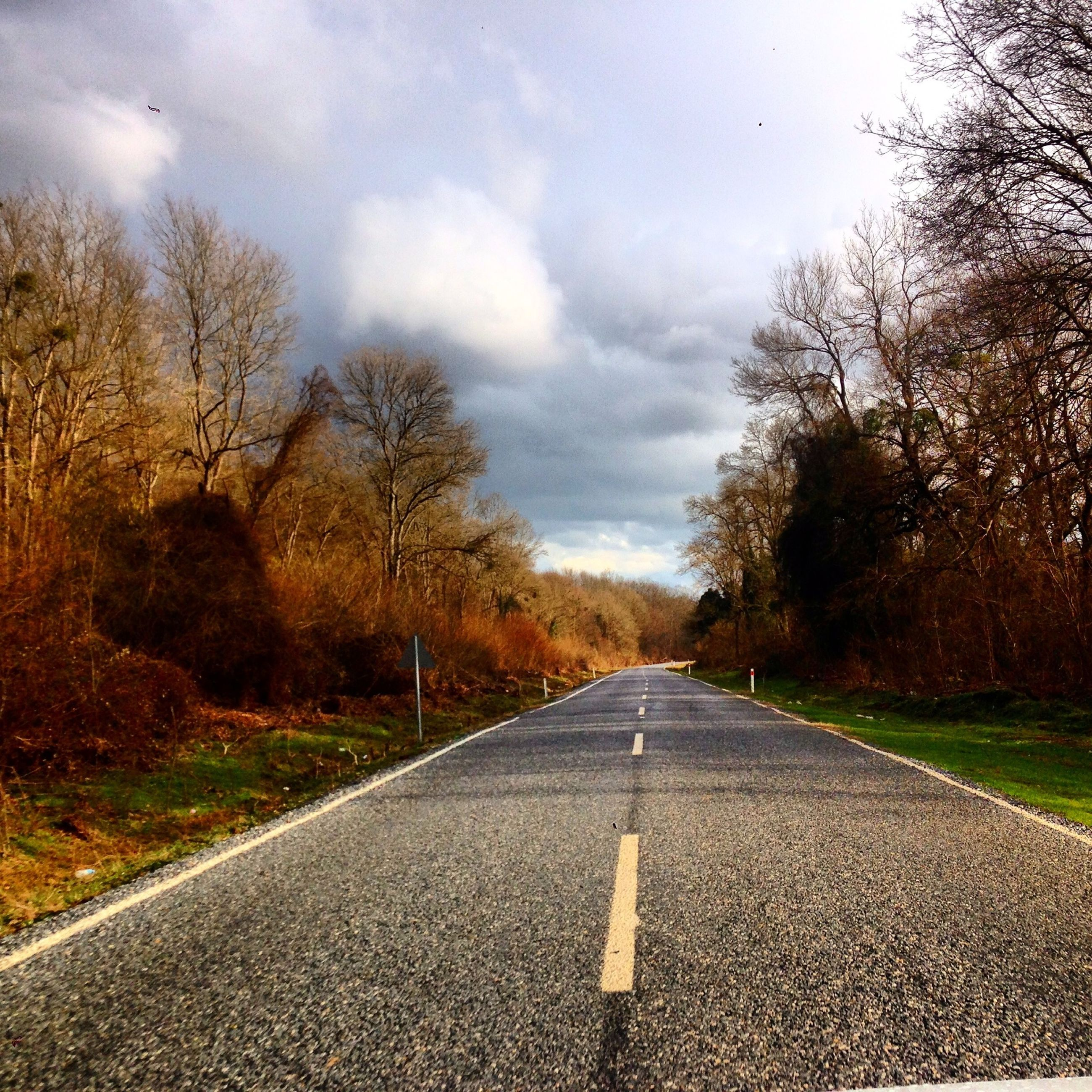the way forward, diminishing perspective, transportation, road, road marking, vanishing point, tree, sky, cloud - sky, asphalt, country road, empty road, cloudy, empty, tranquility, cloud, street, tranquil scene, nature, long