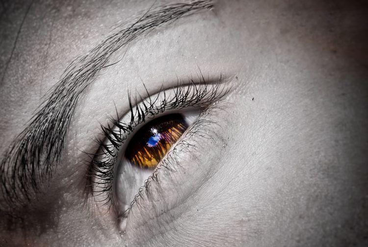 Women Around The World Beauty Close-up Human Body Part Eyelash Human Skin Shiny One Person People Human Eye Adult Eyesight Outdoors Eyeball Day Nikond3300 Scenics Nikon D3300 Wet Close Up EyeEm Best Shots Women Women Who Inspire You Woman Women Portraits The Portraitist - 2017 EyeEm Awards