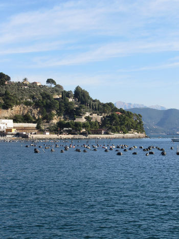 Landscape of Golfo Dei Poeti with its mussel farm in the sea. Province of La Spezia, Italy Bay Beach Cinque Coastline Countries Destinations Famous Farm Golfo Italy La Spezia Liguria Locations Mussel Nautical Old Place Poeti Roof Sea Summer Terre Town Travel Village