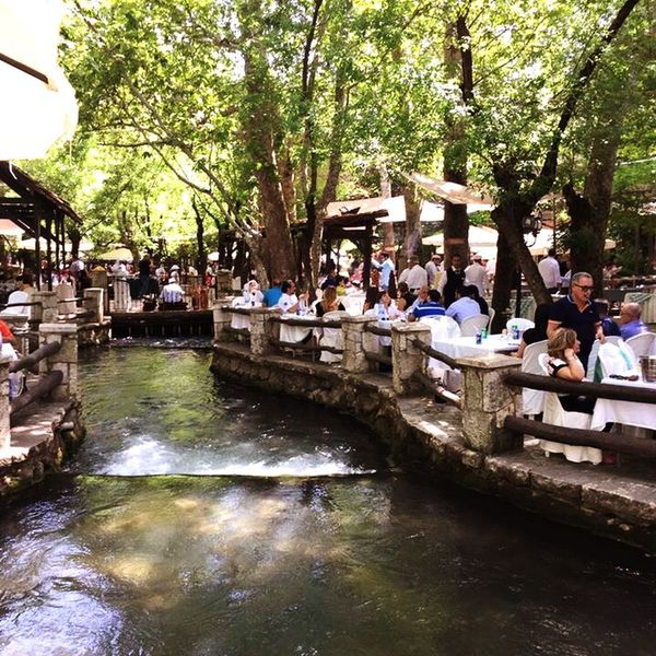 Sunday river garden lunch at Masabki hotel River View Tree Branches Green Color Relaxing Moments Eating Lunch Best Friends Nice Place Beautiful Day Lovely Weather Taking Photos People And Nature Check It Out The Place I'm Now