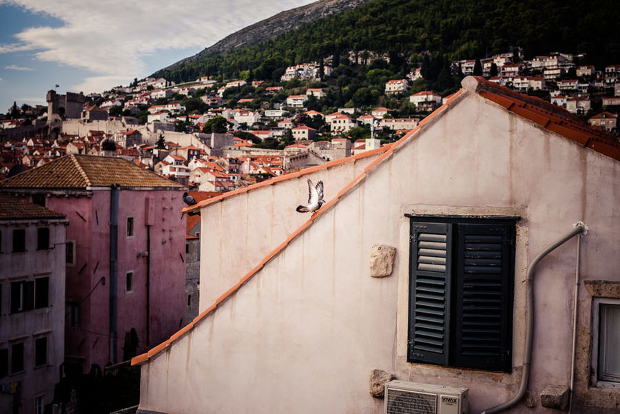 Dubrovnik Croatia Old Town Traveling Travel Travel Photography King's Landing Architecture